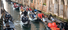 What to Do and See in Venice Italy