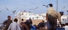 Destination Essaouira