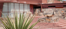 Our Favorite Frank Lloyd Wright Architecture