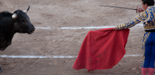 The Bullfights of San Miguel