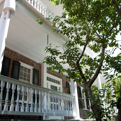 The Historic Houses of Charleston
