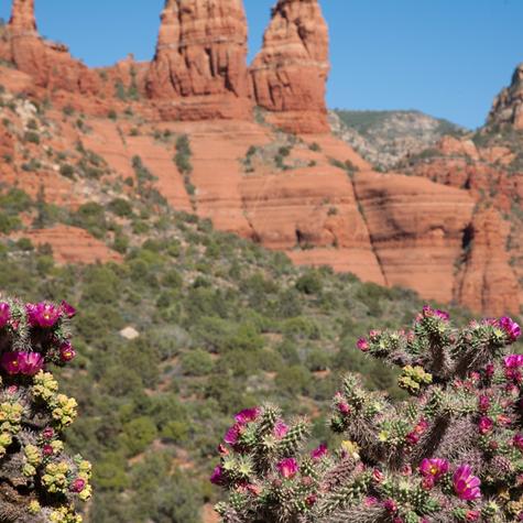 The Red Rocks of Sedona Arizona
