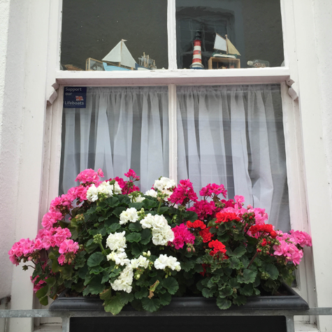 The Flowers of Fowey